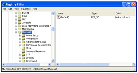 HKEY Current User Software Microsoft folder